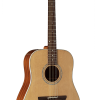 Guitarras Alhambra. Acoustic Guitars. Appalachian W-100