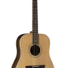 Guitarras Alhambra. Acoustic Guitars. Appalachian W-300