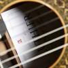 Guitarras Alhambra. Signature Guitars.