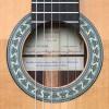 Guitarras Alhambra. Conservatoire. 5 Fp OP Piñana