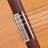 Guitarras Alhambra. Flamenco. 10 Fp Piñana