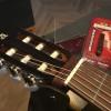 Guitarras Alhambra. Accessories. Straplink. 9512