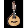 Guitarras Alhambra. Conservatorio. Bandurria 6 P A
