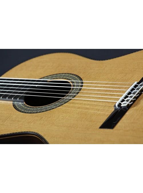 Guitarras Alhambra. Signature guitars. Vilaplana NT Series
