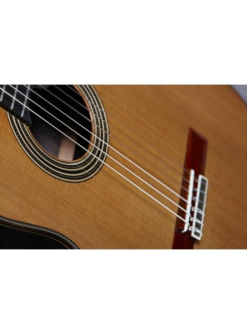 Guitarras Alhambra. Signature guitars. Linea Profesional