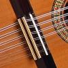 Guitarras Alhambra. Conservatorio. Bandurria 4 P