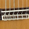 Guitarras Alhambra. Conservatorio. 5 P