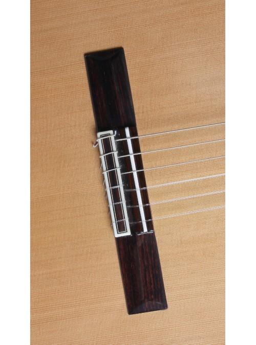 Guitarras Alhambra. Concierto. 10 Premier