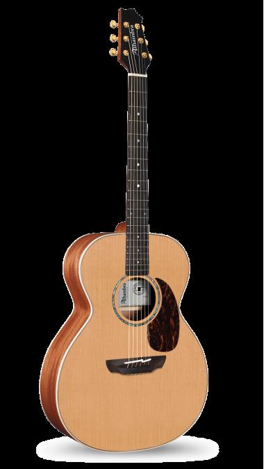 Guitarras Alhambra. Acoustics Guitars. A-CSp