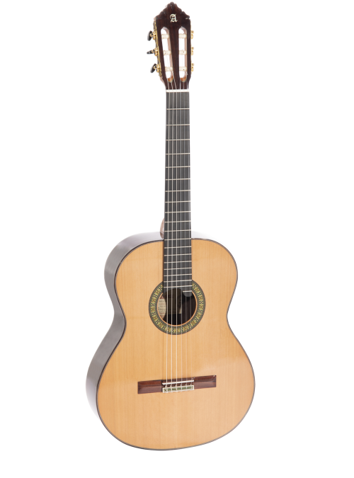 11 P Model by Alhambra Guitars