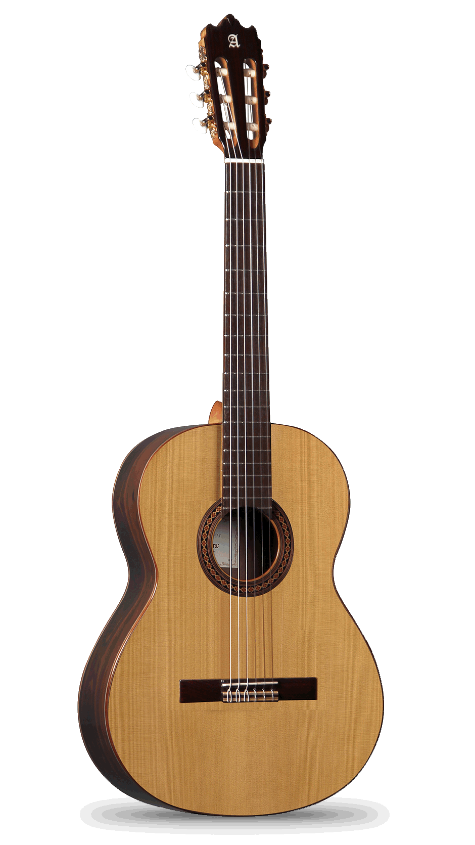 Classical Alhambra Guitars student