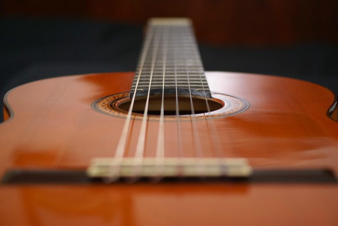 La guitarra española flamenca y sus características