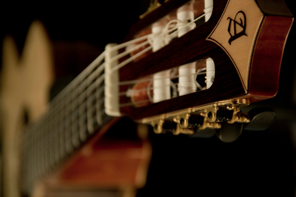 Essential accessories for your guitar