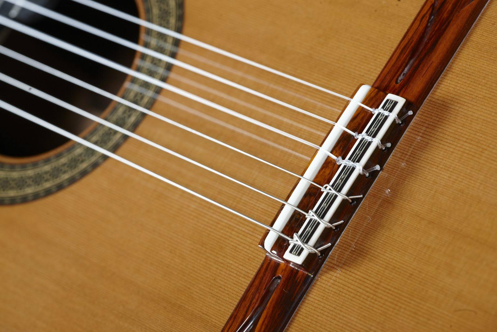 the best kind of string for your guitar guitarras alhambra. Black Bedroom Furniture Sets. Home Design Ideas